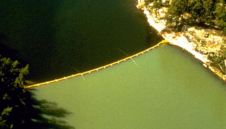 Lake 226 Curtain