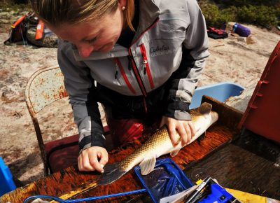 Celebrating Women in Limnology