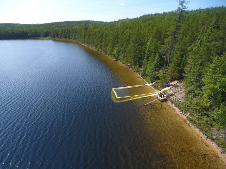 Shoreline experiment at IISD-ELA lake