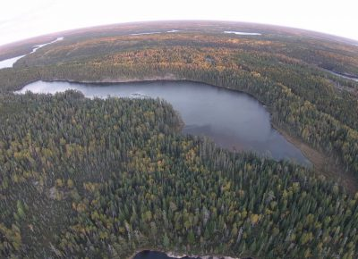 Reducing How Much Nitrogen Enters a Lake Has Little Impact on Algal Blooms