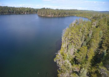Drone shot of lake in Boreal Forest