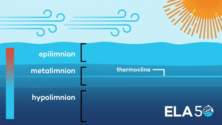how and why lakes stratify and turn over we explain the science
