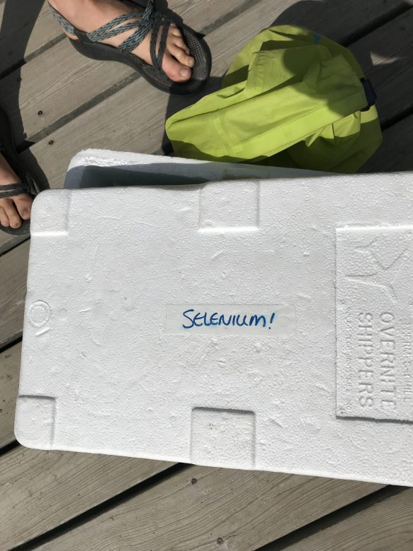 A box labelled selenium on the dock of a lake.
