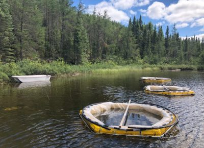 Researchers to measure microplastics in pristine northwestern Ontario lakes