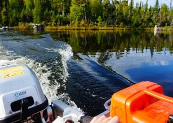 Back of a boat riding through a freshwater lake bordered by trees