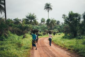 Two African women carrying bundles of sticks walking down a dirt path.