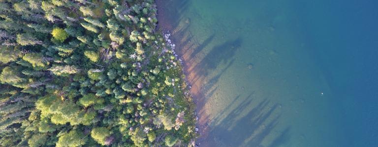 Aerial shot ot turquoise fresh water lake in Ontario Canada bordered by green trees