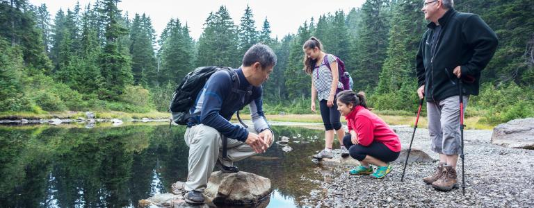 A family of hikers stops to explore a lake in a mountain wilderness park.