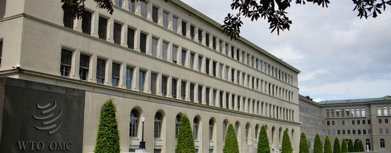 wto-building