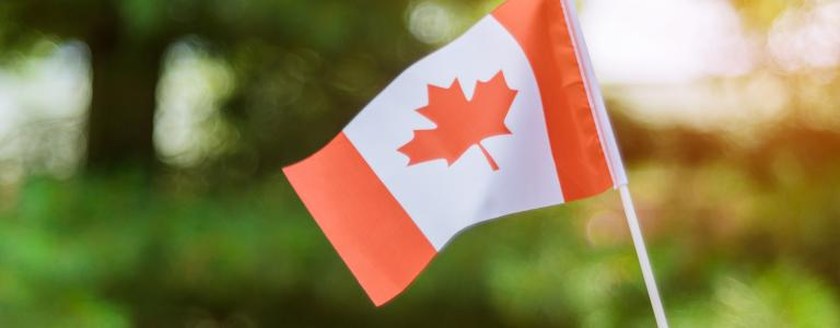 A hand holding a small Canadian flag with blurry trees in the background