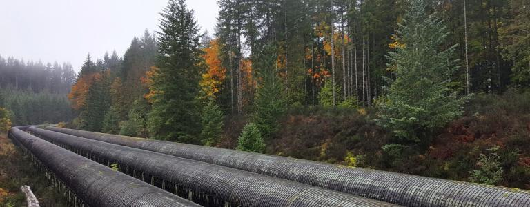 A pipeline runs beside a forest on Vancouver Island, Canada