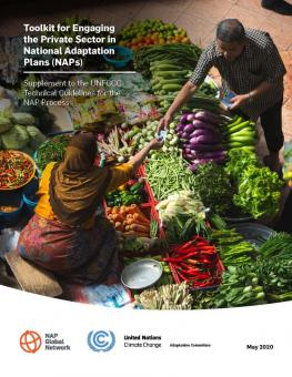 Cover image for the toolkit for engaging the private sector in NAPs