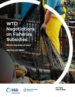WTO Negotiations on Fisheries Subsidies
