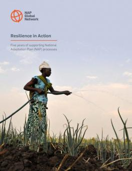 Resilience in Action: Five years of supporting National Adaptation Plan (NAP) processes cover