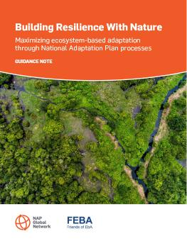 Building Resilience With Nature: Maximizing Ecosystem-based Adaptation through National Adaptation Plan Processes cover