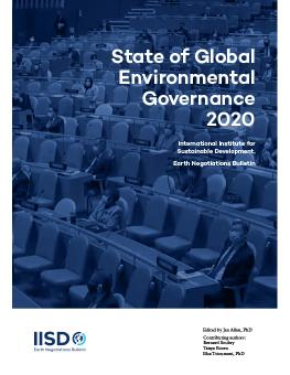 Cover of State of Global Environmental Governance 2020