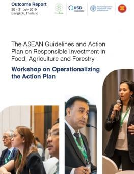 asean-guidelines-cover.jpg