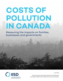 cost-of-pollution-in-canada(8)-1.jpg