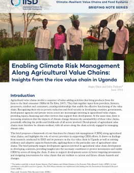 crm-insights-from-rice-value-chain-uganda-1.png