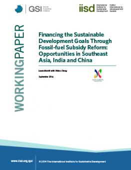 financing-sdgs-fossil-fuel-subsidy-reform-southeast-asian-india-china.jpg