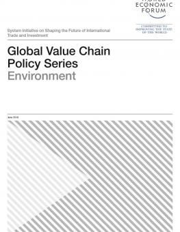 global-value-chain-policy-series-environment.jpg