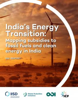 india-energy-transition-1.jpg