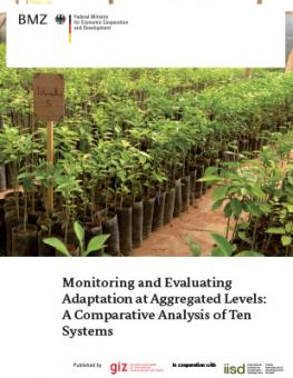 monitoring-evaluating-adaptation-giz-paper.jpg