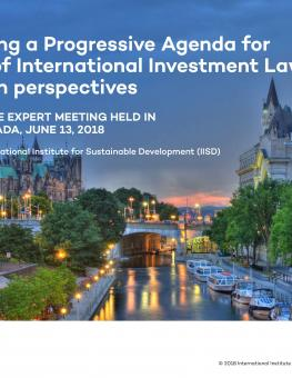 report-ottawa-expert-meeting-june-2018-1.jpg