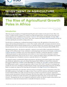 rise-agricultural-growth-poles-in-africa(10)-1.jpg