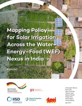 solar-irrigation-across-wef-nexus-india-1.jpg