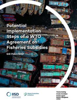 steps-wto-agreement-fisheries-subsidies-1.jpg