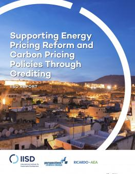 supporting-energy-pricing-reform-carbon-pricing-through-crediting-1.jpg