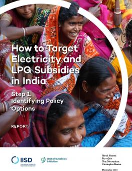 target-electricity-lpg-subsidies-india-step-1-1.jpg