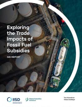 trade-impacts-fossil-fuel-subsidies-1.jpg