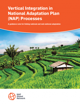 vertical-integration-nap-processes-guidance-note-2.png