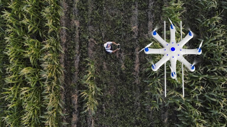 Drone overhead in farm fields