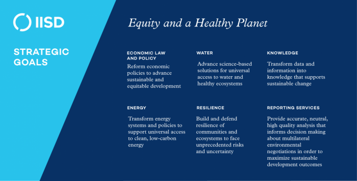 Strategic Goals. Equity and a Healthy Planet