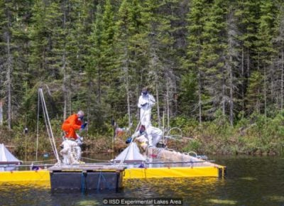 How a deliberate oil spill will help protect the environment