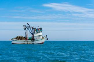 Fish trawler at sea