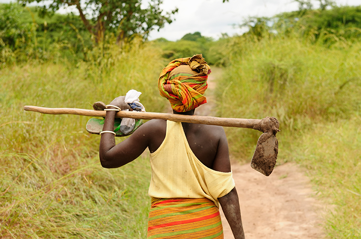 iisd.org - How Can Sustainability Standards Contribute to Empowering Women's Food Security?