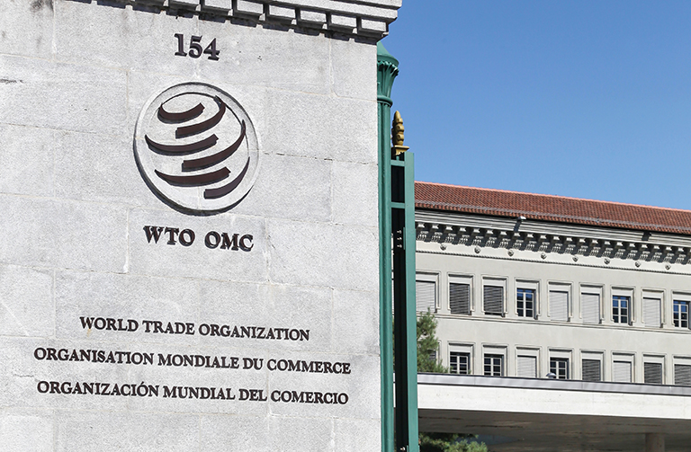 Image result for WTO