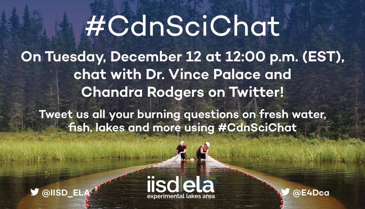 IISD-ELA Twitter chat with Dr Vince Palace and Chandra Rodgers
