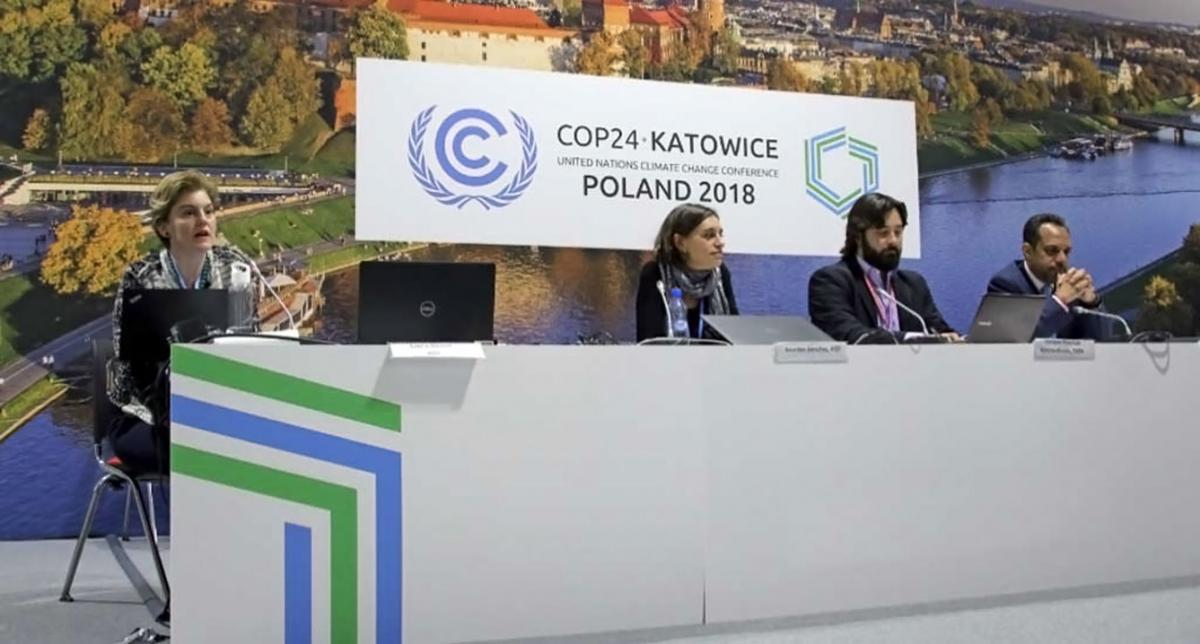Katowice fossil fuel subsidy meeting
